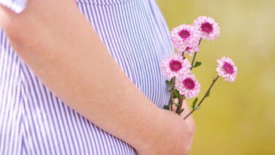 Photo of Суррогатное материнство в России 2020-2021: новый закон
