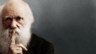 Photo of Чарльз Дарвин и теория эволюции