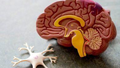 Photo of Займитесь этим сейчас: 4 способа снизить риск болезни Альцгеймера