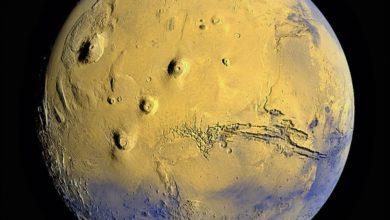 Photo of Будущие исследователи Марса могут стать причиной появления новых вирусов