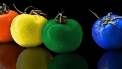 Photo of Как избежать нитратов и пестицидов: выбираем, готовим овощи и фрукты