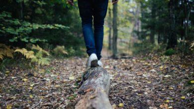 Photo of Ходьба: 9 преимуществ пеших прогулок перед тренировками