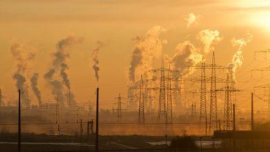 Photo of Ученые: загрязнение воздуха ухудшает здоровье костей