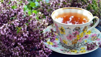 Photo of Секрет чая, который поможет дожить до глубокой старости