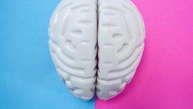 Photo of Окситоцин: гормон любви или гормон кризиса?