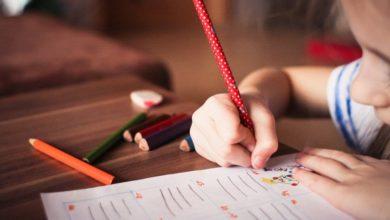 Photo of Психолог перечислила вещи, влияющие на развитие интеллекта у детей