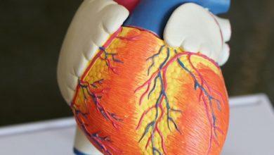 Photo of Как понять, что сердце устало: признаки приближающегося инфаркта