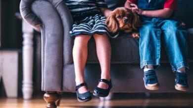Photo of Это не плохое поведение: признаки психических расстройств у детей