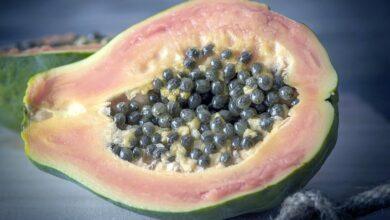 Photo of 17 плодов, помимо апельсинов, богатых витамином С