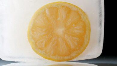 Photo of Готовим лимонный лед — для салатов, смузи, супов