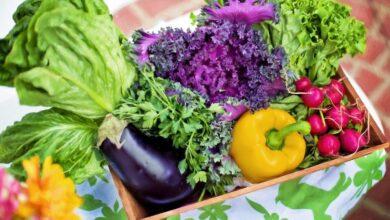 Photo of 11 продуктов, которые очищают организм изнутри