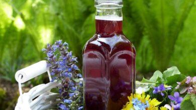 Photo of Клубничный уксус – для вкусных блюд и очищения организма