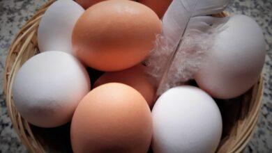 Photo of Неожиданное свойство куриных яиц: помогают похудению