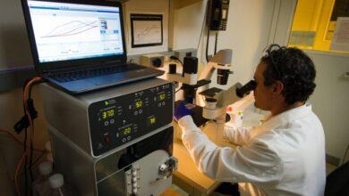 Photo of Израильские эксперты планируют лечить рак ультразвуком