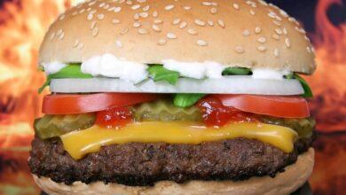 Photo of Специалист рассказала, сколько гамбургеров можно съесть без вреда для здоровья