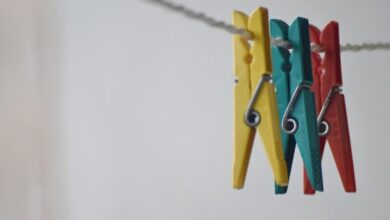 Photo of Три средства для экологичной стирки: используем колючелистник, мыльнянку и зольный щелок