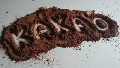 Photo of Кому можно пить какао и в чем его польза