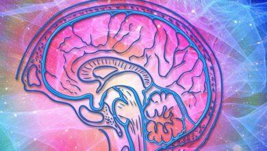 Photo of Как улучшить мозговое кровообращение без медикаментов: рассказывает врач