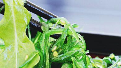 Photo of Нори, чука и морская капуста: кому нужно есть морские водоросли