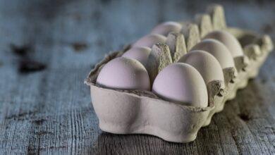 Photo of Как избавиться от микробов в яйце: рассказывает эксперт