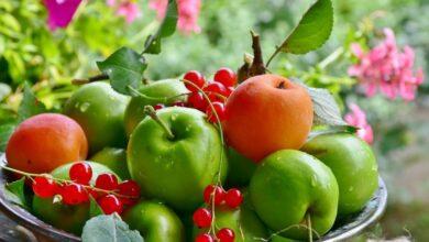 Photo of Детокс для печени в конце лета: используем сезонные овощи и фрукты