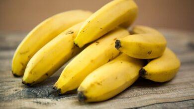 Photo of Диетолог рассказала, что особенного организму дают бананы