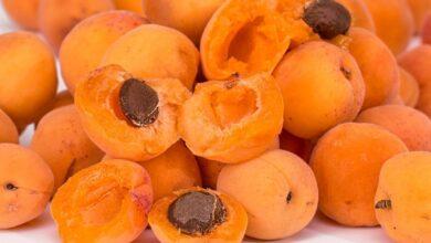 Photo of Почему нежелательно есть косточки фруктов