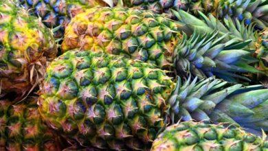Photo of Диетолог рассказала, почему полезно есть ананасы