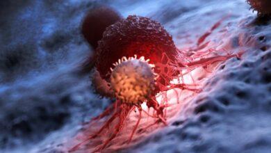 Photo of Рак яичников, простаты и молочной железы: как они передаются по наследству