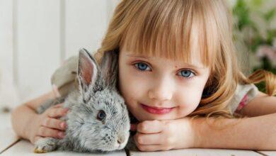 Photo of Почему мы забываем события детства и как улучшить память у ребенка