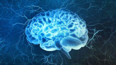 Photo of Выявлено, почему при проникновении в мозг COVID-19 лишает пациента обоняния