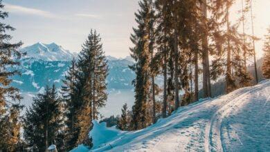 Photo of Почему полезно кататься на лыжах и как правильно начать