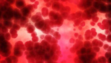 Photo of Почему кровопускание до сих пор используют как метод лечения