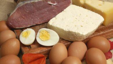 Photo of Выяснилась роль белковой пищи в долголетии