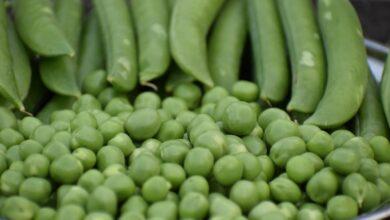 Photo of Овощи, которые мешают худеть